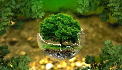 politica-qualita-ambiente-energia