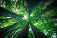 Sostenibilita Spiegata Modo Nostro